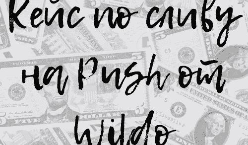 Кейс по сливу на Push от Wildo